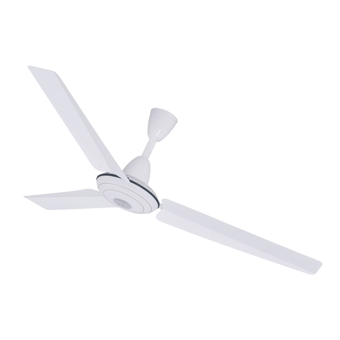 Deluxe Fan Model