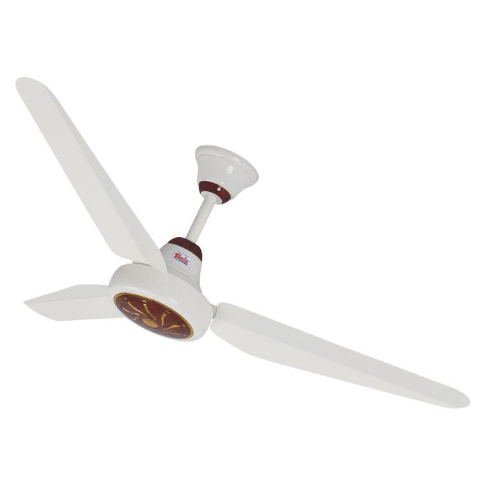 Peral Fan